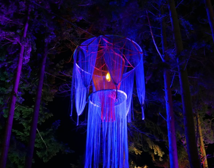 festival themed night lighting for special events